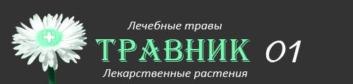 Травник–01: Лекарственные растения и лечебные травы России